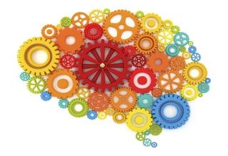 Разноцветный мозг