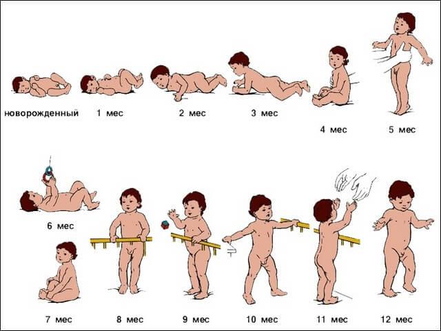 Развитие детей первого года жизни