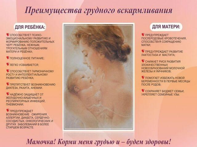 Преимущества вскармливания малыша грудью