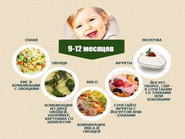 Меню ребёнка 11 месяцев рецепты