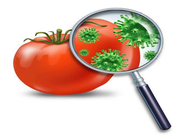 Грязный помидор