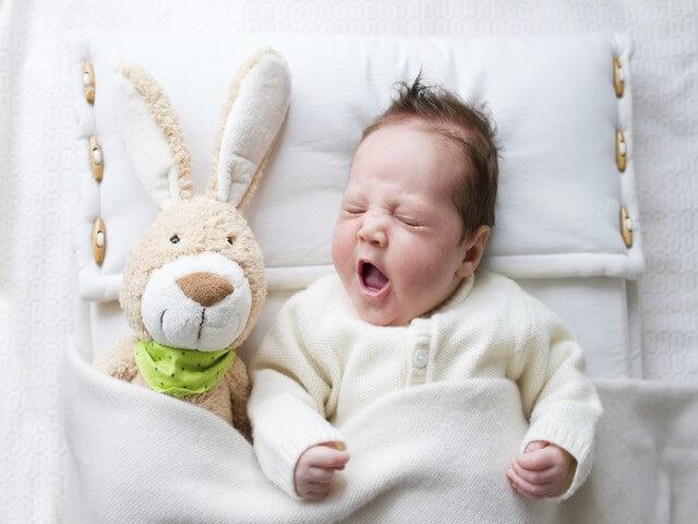 Малыш и мягкая игрушка