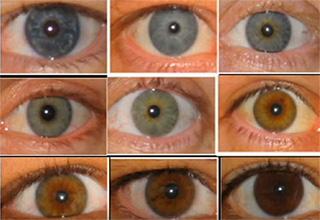 Цвет глаз меняется у детей